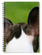 Undecided Spiral Notebook