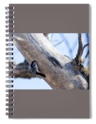 Under Contruction Spiral Notebook