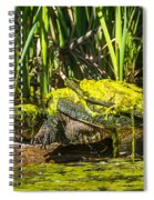 Under Covered Spiral Notebook