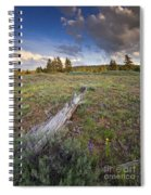 Under Stormy Skies Spiral Notebook
