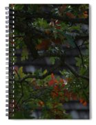 Under The Old Oak Tree Spiral Notebook