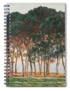 Under The Pines. Evening Spiral Notebook