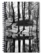Under The Tall Trees Spiral Notebook