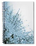 Under Water Spiral Notebook
