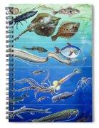 Underwater Creatures Montage Spiral Notebook