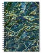 Underwater Roots Spiral Notebook