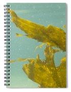 Underwater Shot Of Seaweed Plant Floating Leaves Spiral Notebook