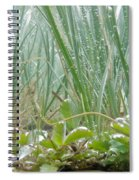 Underwater Shot Of Submerged Grass And Plants Spiral Notebook