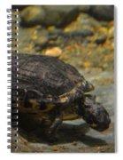 Underwater Turtle Spiral Notebook