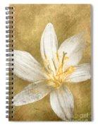 Undying Love Spiral Notebook