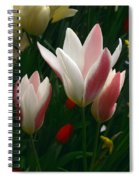 Unfolding Tulips Spiral Notebook