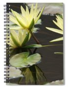 Unity Of Spirit Spiral Notebook
