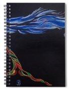 Unknown Spiral Notebook