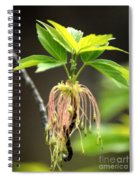 Unknown Tree Flower Spiral Notebook