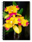 unnamed - Orchid Spiral Notebook