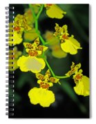 unnamed hybrid Orchid  Spiral Notebook