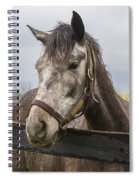 Unrivaled Honor Spiral Notebook