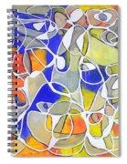 Untitled #30 Spiral Notebook