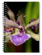 Unusual Orchid Spiral Notebook