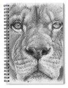 Up Close Lion Spiral Notebook