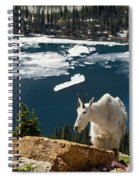 Up From The Lake Spiral Notebook