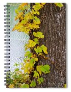 Up The Tree Spiral Notebook