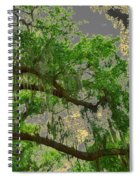 Up Through The Haunted Tree Spiral Notebook