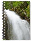 Upper Cougar Falls Spiral Notebook