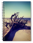 Uprooted Tree On The Beach Spiral Notebook