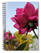Upward Roses Spiral Notebook