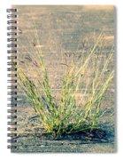 Urban Grass Spiral Notebook