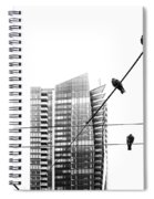 Urban Pigeons On Wires Spiral Notebook