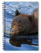 Ursa Mirrored Spiral Notebook