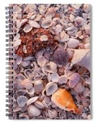 Usa, Florida, Sanibel Island, Gulf Spiral Notebook