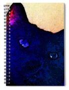 Vader 2 Spiral Notebook