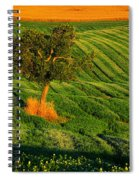 Val D'orcia Tree Spiral Notebook