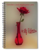 Valentine Careful I Just Might Poke You Spiral Notebook