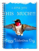 Valentines Day I Love You This Much Spiral Notebook