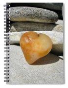 Valentine's Day - Precious Heart Spiral Notebook