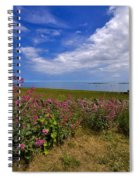 Valerian By A Stone Wall On The Northumberland Coast Spiral Notebook