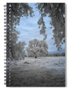 Valley Oak #3b Spiral Notebook