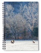 Valley Of Elk Spiral Notebook