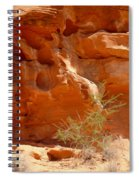 Valley Of Fire Rock Formation Spiral Notebook