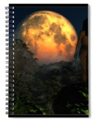 Valley Of The Moon... Spiral Notebook
