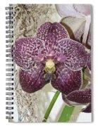 Vanda Robert's Delight Spiral Notebook