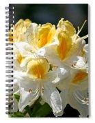 Vanilla Butterscotch Spiral Notebook