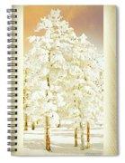 Vanilla Icing Spiral Notebook