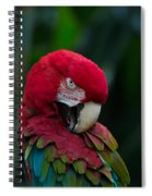Vanity-close Up Of A Green Winged Macaw Spiral Notebook