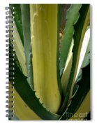 Variegated Agave Spiral Notebook