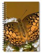Variegated Fritillary Spiral Notebook